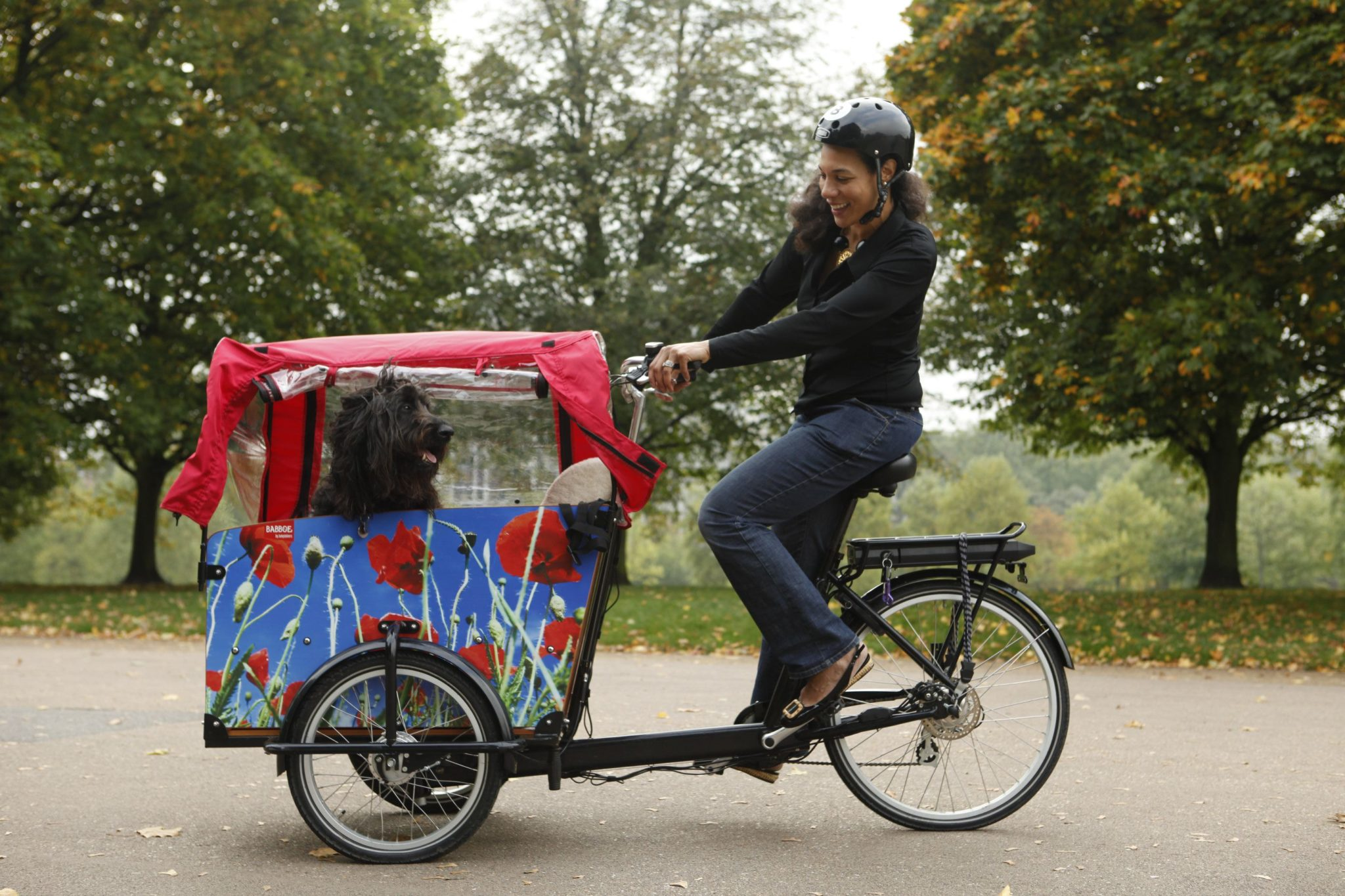 Cargo Bikes The Largest Online Cargo Bike Store