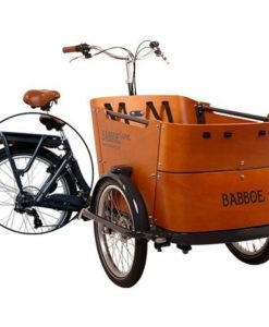 Babboe Curve Electric